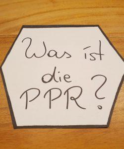 Was ist die PPR?