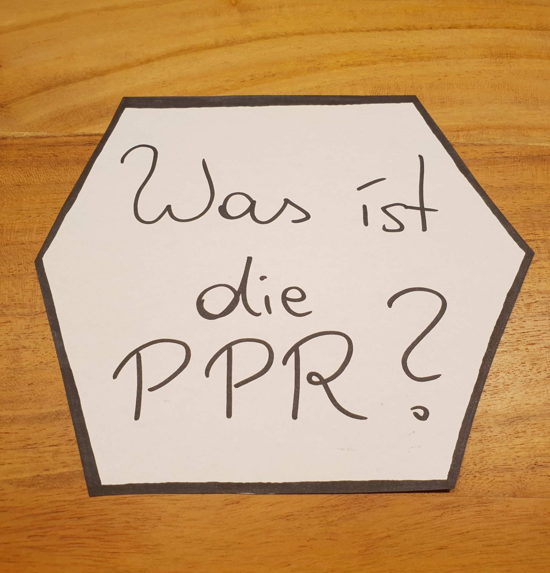 Read more about the article Was ist die PPR?